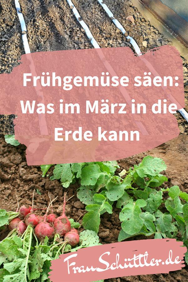 Frühgemüse säen: Was im März in die Erde kann