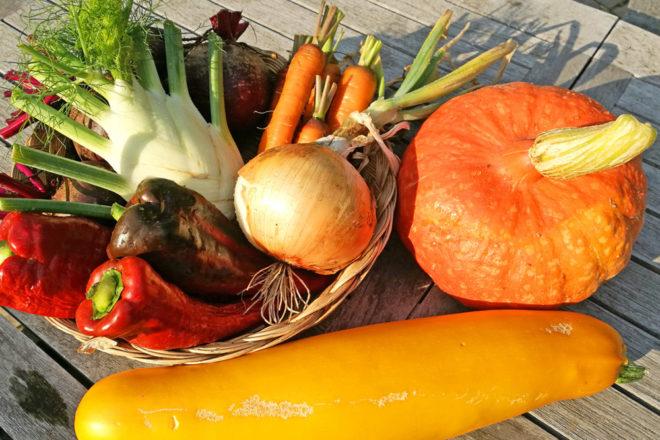 Gemüse ernten: Der beste Zeitpunkt für Kartoffeln, Kürbis und Co.